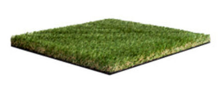 Namgrass Enigma