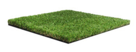 Namgrass Green Eclipse