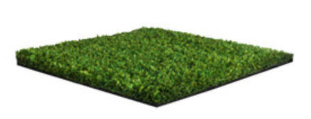 Namgrass Green Fresh
