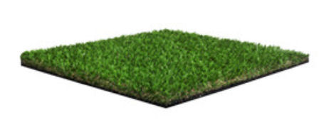 Namgrass Green Vision